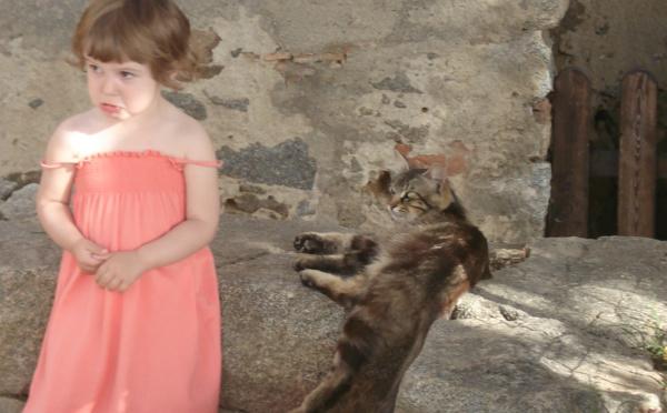 Les contes du chat perché de Marcel Aymé -   séances scolaires primaires dès 6 ans
